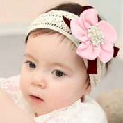 Atdoshop(TM) Infant Babies' Lace Flower Hair Band Headband Elastic Hair Headwear