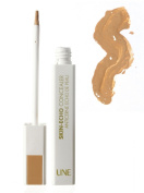 A natural beauty Echo Concealer Skin Colour Beige brown E12