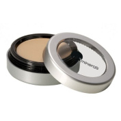 glo minerals Camouflage Oil Free Golden