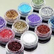 12pcs Colour Glitter Dust Powder Tip Decoration Nail Art