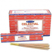 Celestial Nag Champa Incense Sticks 15g Box