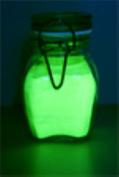 GREEN Glow in the Dark Daytime Visible Pigment Powder 10g