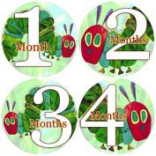Baby Month Onesie HUNGRY CATERPILLAR, Stickers Baby Shower Gift Photo Shower Stickers Baby Photo Onesie Milestone Stickers