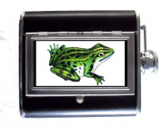 Green Frog Victorian Colour Naturalist Art