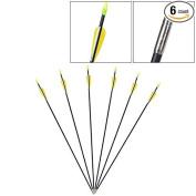 Generic 6pcs Archery Arrow hunter Nocks Fletched Arrows Fibreglass Target Practise 80cm