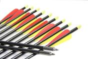 Longbowmaker 12PCS 80cm Fibreglass Target Practise Arrows F2YRT2