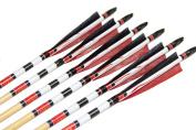 Longbowmaker One Dozen Printing Turkey Feathers Cedar Wood Targeting Arrows NWYT3