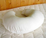 Holy Lamb Organics Wool and Cotton Nursing Pillow