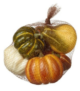 Assorted Pumpkins and Gourds in Bag Autumn Decor