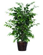 Vickerman AZTBU0140 Ficus Bush, Dark Green, 1.2m