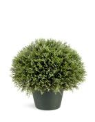 National Tree Juniper Bush with Dark Green Round Plastic Pot, 38cm
