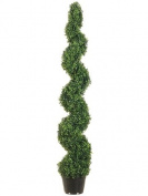 Allstate Floral & Craft Knock Down Pond Boxwood Spiral Topiary Plant, 1.5m