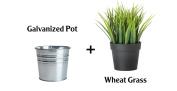 Ikea Artificial Potted Plant Wheat Grass 23cm Lifelike Nature Houseplant Decoration Fejka- With Metal Pot!