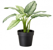 Ikea Artificial Potted Plant Dumb Cane, Dieffenbachia 23cm Lifelike Nature Houseplant Decoration Fejka