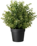 Ikea Artificial Potted Plant, Thyme, 24cm