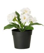 Ikea Fejka Artificial Potted Plant Small White Rose Plant 18cm Tall 3 1/2 Pot Diameter