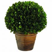 Silk Decor Preserved Boxwood Ball Topiary, 21cm , Green