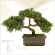 Artificial Japanese Cedar Bonsai Tree 23cm Tall