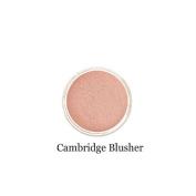 Mineralshack natural mineral powder Blusher sifter jar CHOICE OF 5 SHADES and 3 SIZES