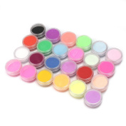 Perfect Dust 24 Colours Manicure Acrylic Powder Nail Art Tool Kit Decoration New