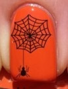 Halloween Spider on Web - Nail Decals by YRNails