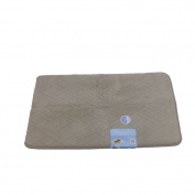 Tranquilly Luxurious Memory Foam Beige Bath Mat Skid Resistant Throw Rug 20x32