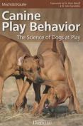Canine Play Behavior