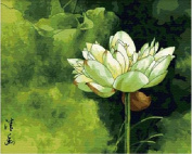 Diy oil painting, paint by number kit- Quiet Lotus 16*50cm .
