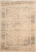 Safavieh VTG113-660 Vintage Collection Viscose Area Rug, 2.4m by 3.4m, Warm Beige