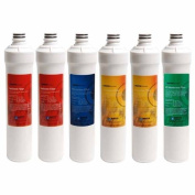 Watts Premier W-2R-2Y-1B-1G Ro Pure Replacement filter Plus Membrane, 6-pack