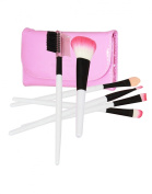 6 Piece Professional Makeup Brush Set in Pink Case