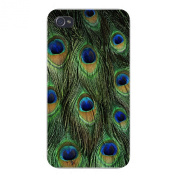 Hat Shark Apple Iphone Custom Case 5 / 5S White Plastic Snap On - Peacock Feathers Up Close