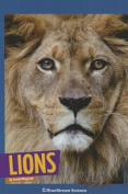 Lions (Wild Cats)