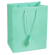 10 pcs Large Fancy Tiffany Blue Glossy Finish Shopping Paper Gift Sales Tote Bags with Blank Message Tag 20cm x 10cm x 25cm