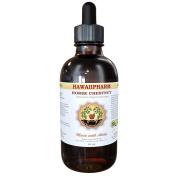 Horse Chestnut Liquid Extract, Organic Horse Chestnut (Aesculus hippocastanum) Tincture 60ml