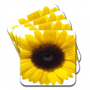 Bright Yellow Sunflower Radiating in Light Set Of 4 Premium Wooden Coasters