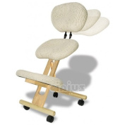 Professional ergonomic chair with back, Natural colour