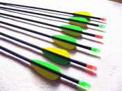 "12 Pcs30"" Pure Carbon Arrow 700SP Target Arrow Both for Recurve Bow & Traditional Bow"