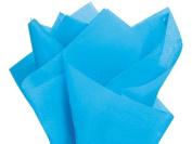 Turquoise Tissue Paper 50cm X 80cm - 48 Sheet Pack