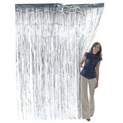 Set of 2 Metallic Silver Foil Fringe Curtains