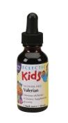 Kids Valerian - Passion Flower No Alcohol Glycerite Eclectic Institute 30ml Liqu
