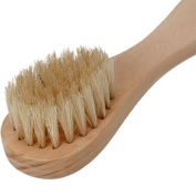Wooden Handle Facial Cleansing Brush with Natural Bristles