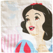 Girls Disney Princess Super Soft Face Wash Cloth Flannel Towel