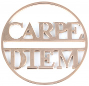 Milano Coin Disc For Milano Keeper Pendant Holder Locket Carrier Carpe Diem