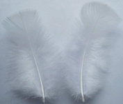 White Turkey Plumage Craft Feathers - Mini Pkg