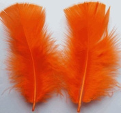 Orange Turkey Plumage Craft Feathers - Mini Pkg