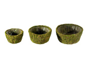 SuperMoss (55100) Roseville, Fresh Green, Set of 3