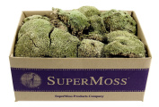 SuperMoss (21537) Mood Moss Dried, Natural, 1.4kg