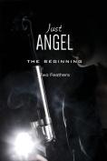 Just Angel the Beginning
