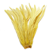 25pcs 30cm - 36cm Bleach-Dyed Rooster Coque Tail Feathers, 16+ Colours to Pick Up
